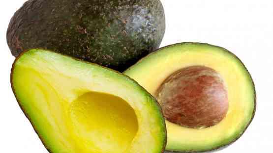 Avocado: The Allgator Pear