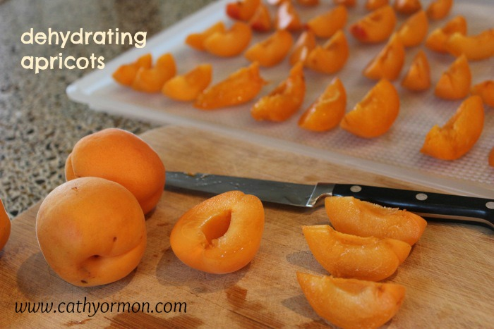 drying apricots caption 0444