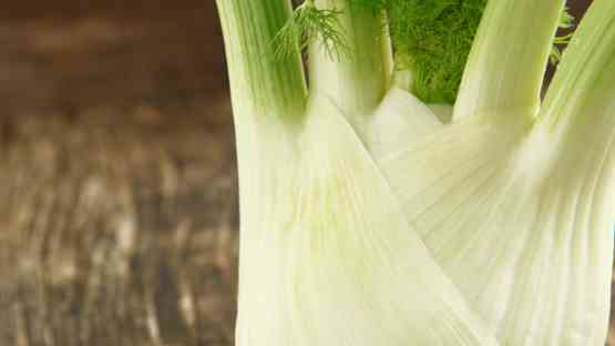 Fennel - Delicious and Nutritious!