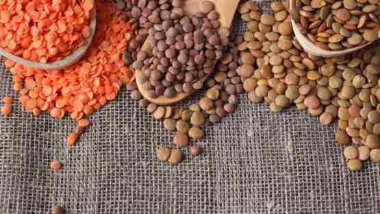 Lentils Are a Legume - True or False?