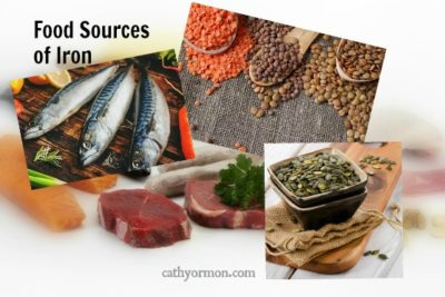 Food sources of iron, plant and animal