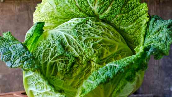 Cabbage - 5 Reasons to Add It to Your Dietary Lifestyle!