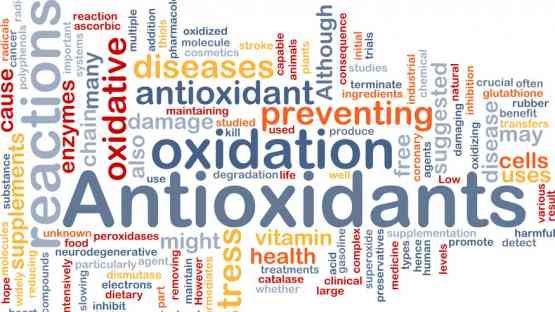 How Oxidative Stress Can Affect Your Health